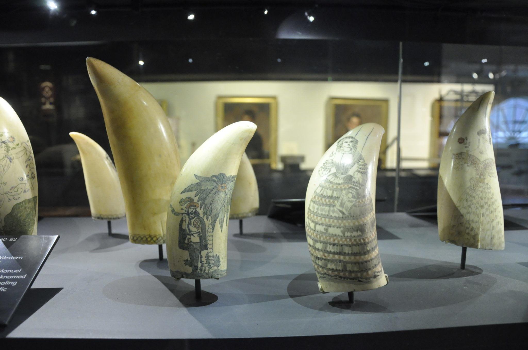 NANTUCKET WHALING MUSEUM SCRIMSHAW